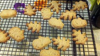 Dogcookies
