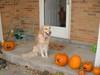 Fall_2007_017