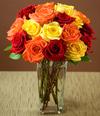 Bfw_roses